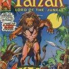 Tarzan: Lord of the Jungle #13  (FN to VF-)