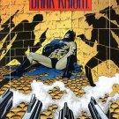 Batman: Legends of the Dark Knight #14  NM