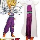 Dragon Ball Z: Son Gohan  Super Saiyan Fighting Character Costume Uniform