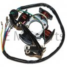 China Dirt Pit Bike Atv Quad 156FMI 162FMJ 125cc 150cc 4 Pole Stator Alternator