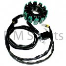 Scooter Moped 12 Pole Stator Engine 162FMK 163FML Part
