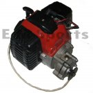 Gas Stand Up Scooter 49cc Engine Motor Replace Goped Zenoah 23cc 26cc 29cc 33cc