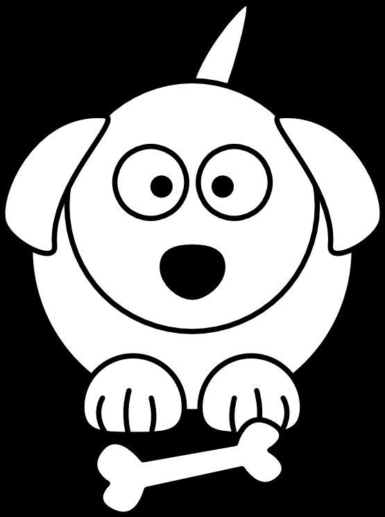 DOG SHAMPOO - Pet Care, Liquid Soap, Shampoo, Large 16 ounce