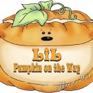 LIL PUMPKIN on the WAY -- MATERNITY shirt, (2xLarge or 3xLarge)