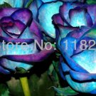 Authentic Chinese 100pcs SEEDS pcs Blue Rose Seeds