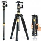 New Light Q555 professional SLR camera +Movie tripod Portable tripod stand