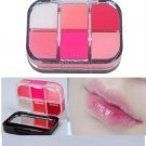 Moisture Lipstick Cosmetic 6 Colors Lip Gloss Palette Kit (BICP051734)