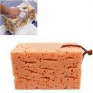 Durable Honeycomb Car Coral Cleaning Car Macroporous Washing Sponge 9CM (BICP048577)