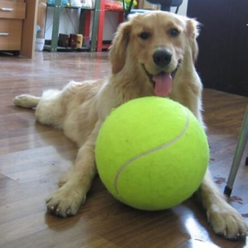 1 Pcs Giant tennis ball 24 CM Pet TOY db