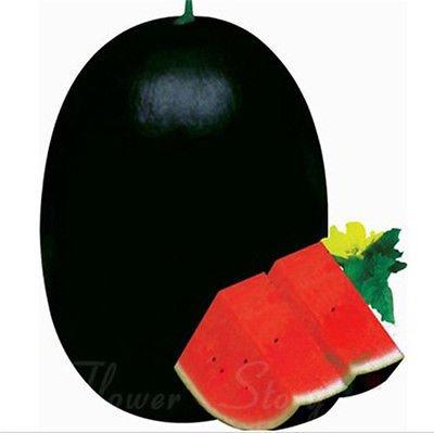 Black Watermelon Seeds 20 Seeds