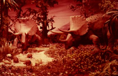 Disneyland 35mm TRICERATOPS AND YOUNG Souvenir Slide PANA-VUE (Vintage) VP121