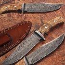 Custom Made Damascus Steel Hunting Knife w/ Burl Olive Wood Hand
