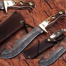Custom Made Damascus Steel Gut Hook Hunting Knife W/ Stag Handle