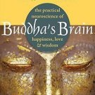 Buddhas Brain  Practical Neuroscience of Happiness Love & Wisdom by Rick Hanson
