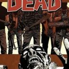 The Walking Dead: Something To Fear, Vol. 17 by Robert Kirkman