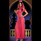 2015 New Sexy Exotic Apparel Women's Genie Costume Aladdin Jasmine Princess Dress