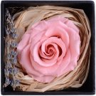 Eternal Life Flowers, Preserved Flowers Pink Rose birthday Wedding day Gift Box Set
