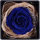 Eternal Life Flowers, Preserved Flowers Blue Rose birthday Wedding day Gift Box Set