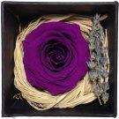 Eternal Life Flowers, Preserved Flowers Purple Rose birthday Wedding day Gift Box Set