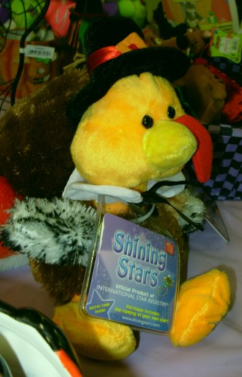 SHINING STAR TURKEY RETIRED VIRTUAL PET NEW WITH SEALED CODE TAG RUSS BERRIE