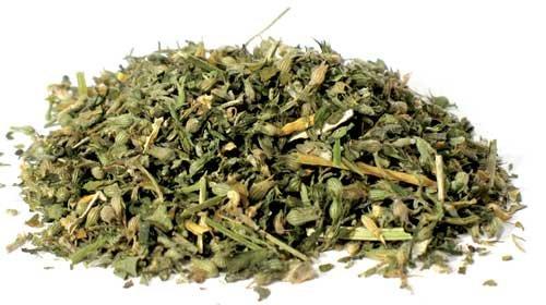 1 oz Catnip cut (Nepeta cataria)
