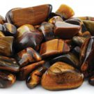 Tumbled Gold Tigers Eye -