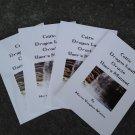 Celtic Dragonland Manual  Printed OUTSIDE UK