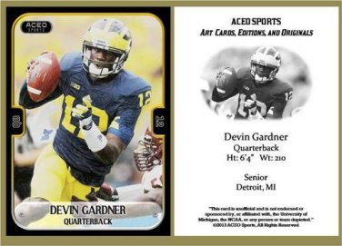 Devin Gardner 2013 ACEO Sports Football Card Michigan