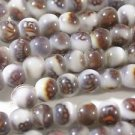 100 WHITE & BROWN ACCENT GLASS  BEADS 6mm   LOT ~A87