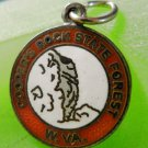 SOUVENIR CHARM: sterling 925 silver ENAMEL Coopers Rock State Forest