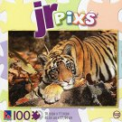 JR pixs - Resting Tiger - 100 Piece Jigsaw Puzzle