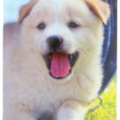 2016-2017 2 Year Monthly Planner - Puppies