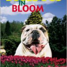 Bulldogs in Bloom. Books. Isabelle Francais