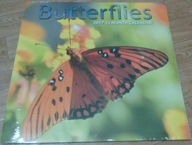 Butterflies 2017 12 Month Calendar