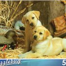 Two Yellow Labrador Retriever Puppies in the Barn - 500 Pc Jigsaw Puzzle