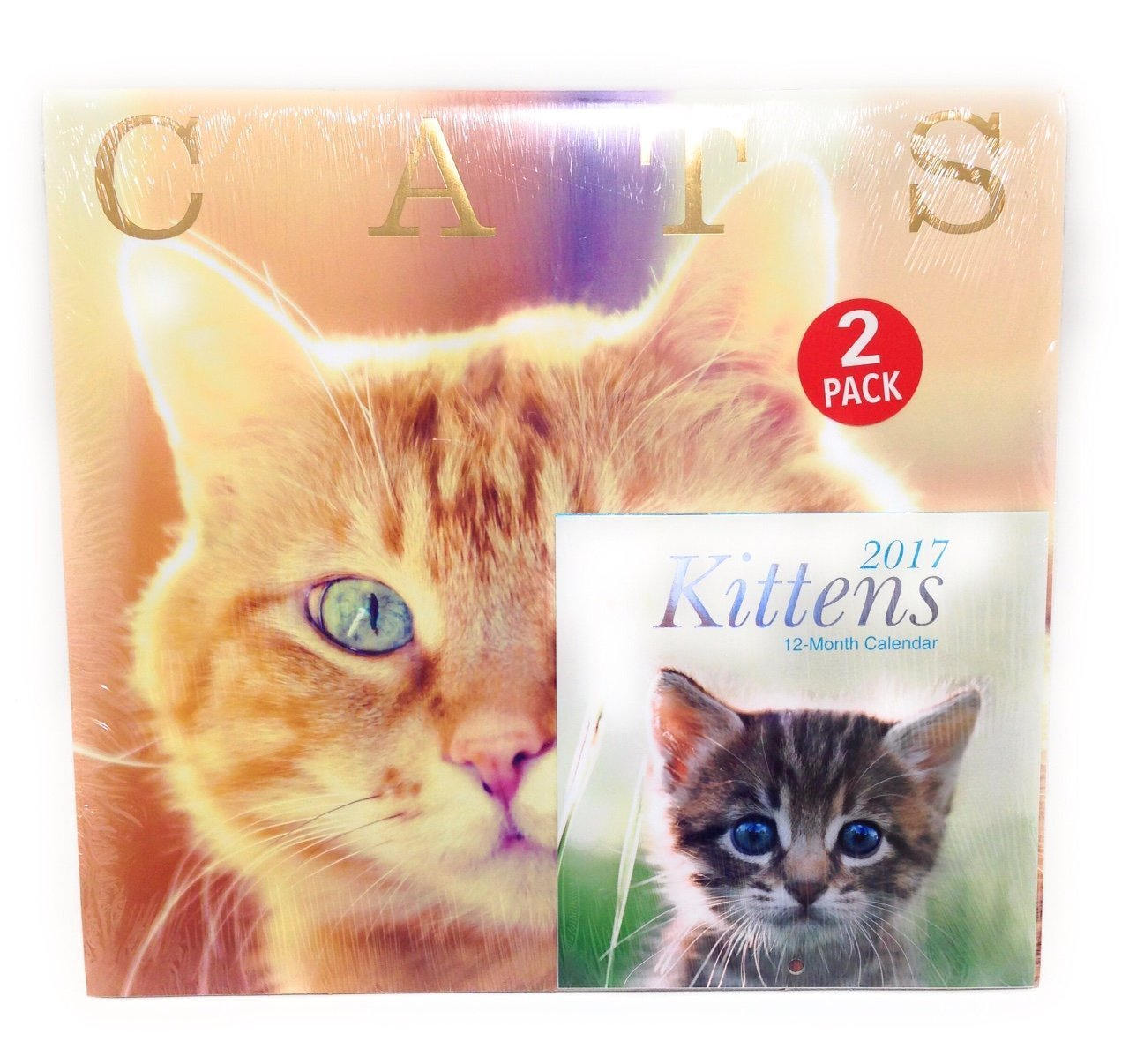 "2017 Cats Calendars 12"" x 12"" With Kittens Mini Calendar"