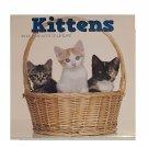 Kittens 2017 12-Month
