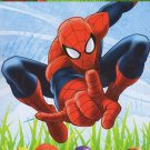 Marvel Spider-Man 5 Page Easter Stickers