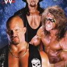 WWE Wrestling Superstars Stickers - 200+ Stickers - v 2