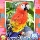 Colorful Parrot - PuzzleBug - 100 Piece Jigsaw Puzzle