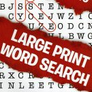 Large Print Word Search - (2016) - Vol.110
