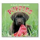 16 Month Wall Calendar 2018 - Puppies