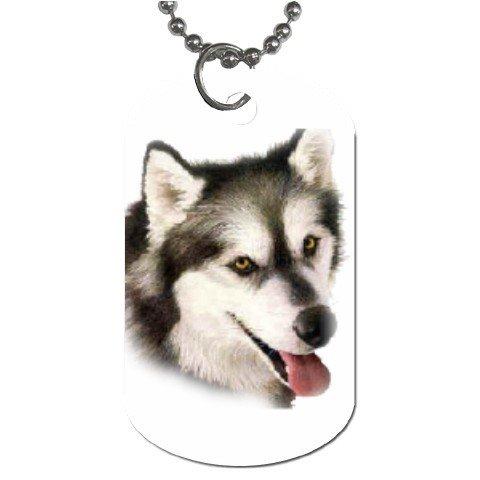Alaskan Malamute Dog Tag Necklace Chain - 12099473
