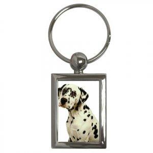 Dalmatian Key Chain Rectangle 12100114