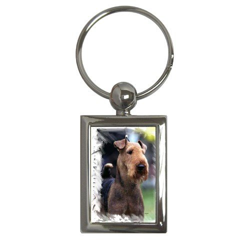 Airedale Terrier Key Chain Rectangle - 12100163