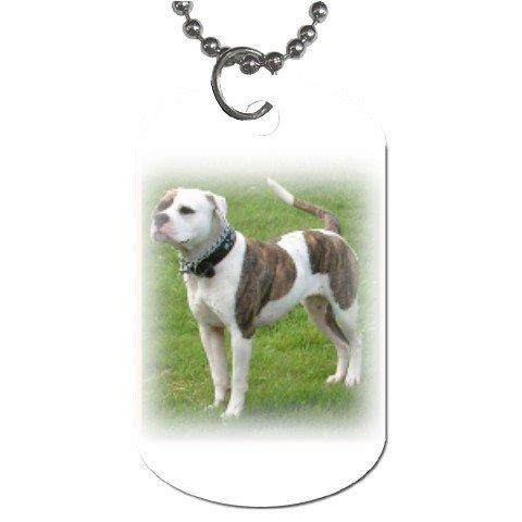 American Bulldog Dog Tag Necklace Chain - 12099479