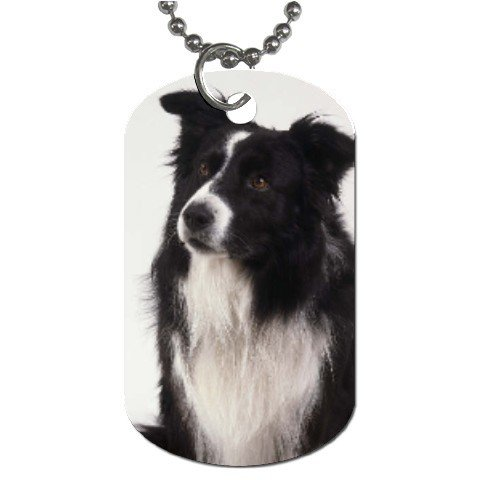 Border Collie Dog Tag Necklace Chain - 12142757