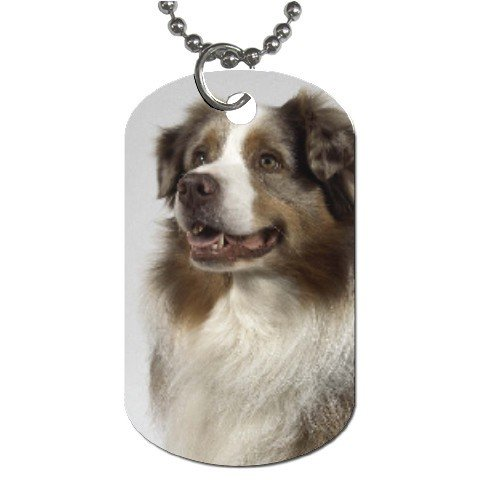 Australian Shepherd Dog Tag Necklace Chain - 12102634