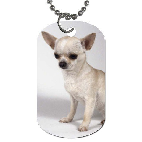 Chihuahua Dog Tag Necklace Chain - 12102683