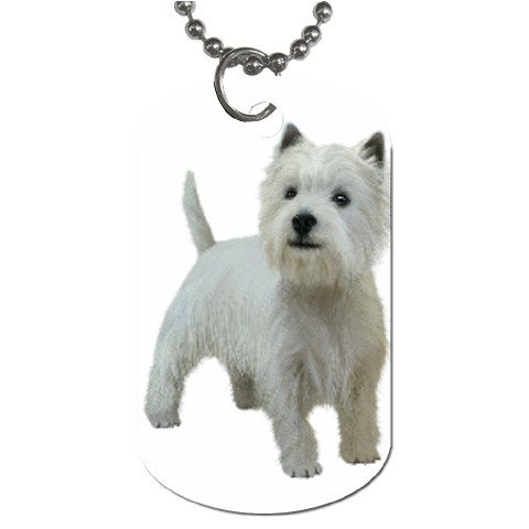 West Highland White Terriers - Westies - Dog Tag Necklace Chain - 12111844